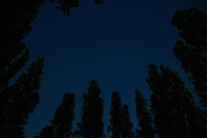 image from oscarlhermitte.com